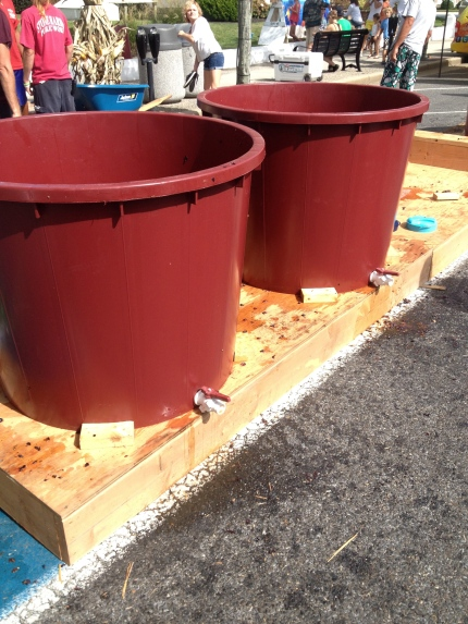 Buckets big enough to hold three people to grape stomp! Photo Credit: Alison Mastrangelo